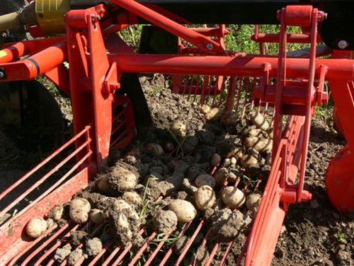 Картофелевыкапыватель