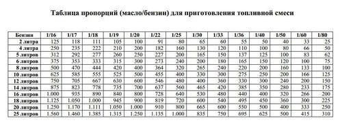 smeshivat_benzin_s_maslom_04